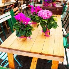 Vintage_Floral_Prop_Party_