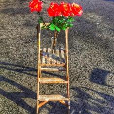 floral-displays