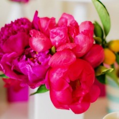 Bright pink flower display