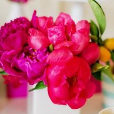 Bright pink flower display